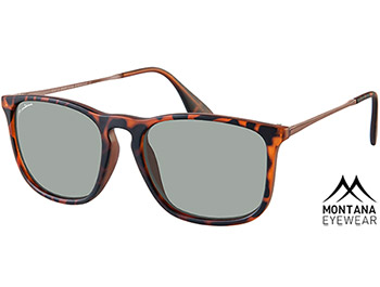 Motto (Tortoiseshell) Retro Sunglasses - Thumbnail Product Image