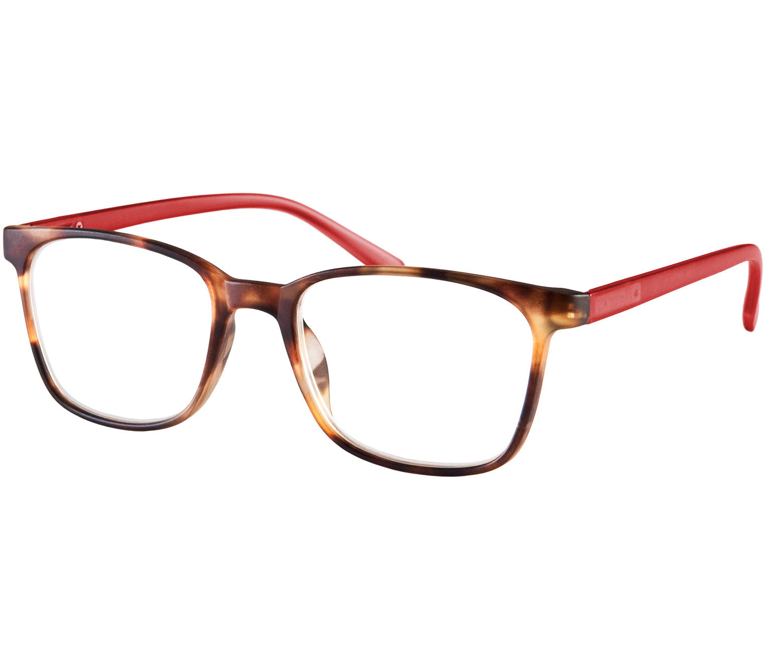 Main Image (Angle) - Artist (Tortoiseshell) Retro Reading Glasses